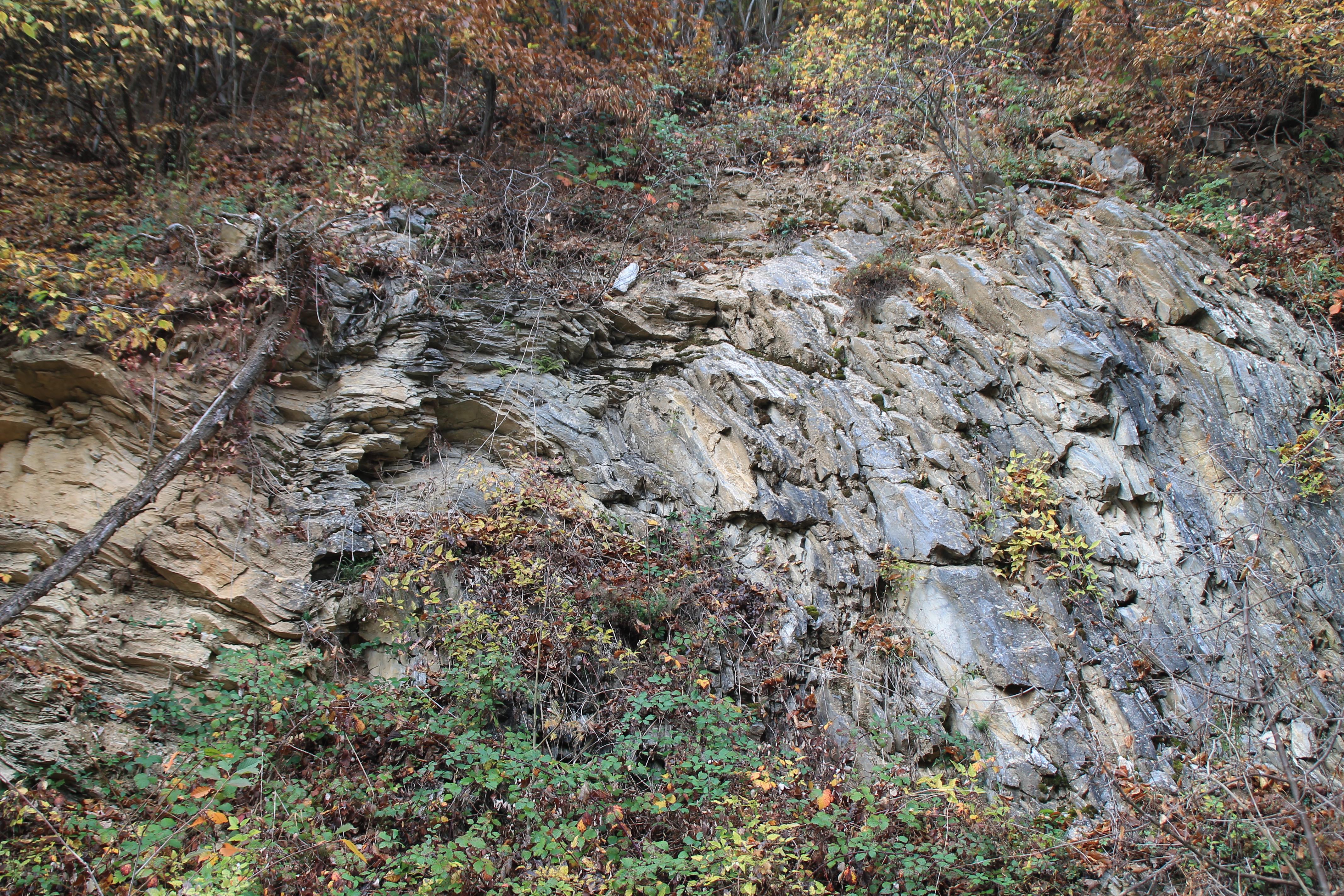 A Bükk legidősebb felszíni kőzeteinek nyomában