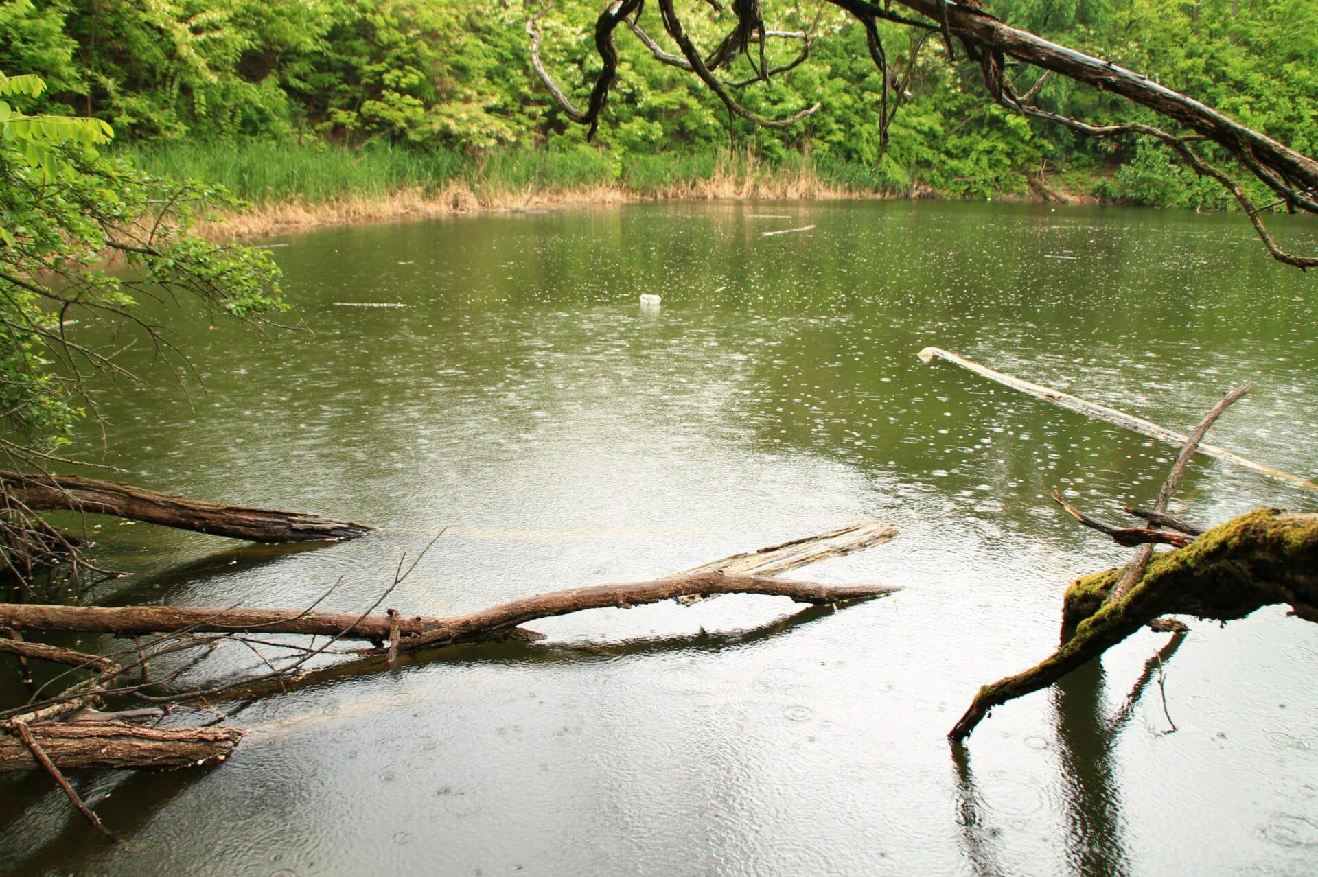 Battonya, Feneketlen-tó
