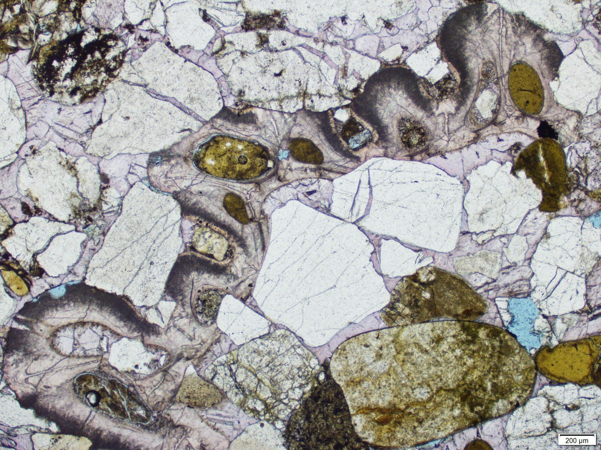 Miocén homokkövek nyomában